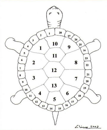 Thirteen Moons on Turtle's Back: A Native American Year of