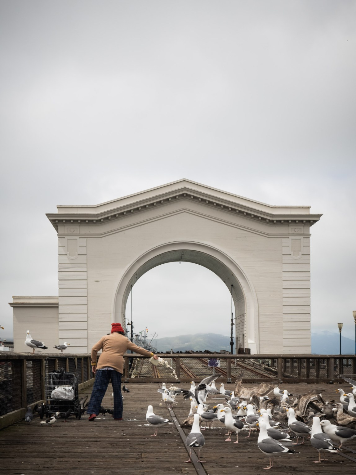Feeding the birds - San Fran