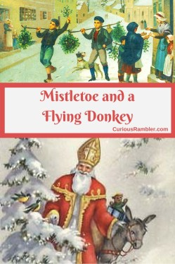 Mistletoe and a Flying Donkey