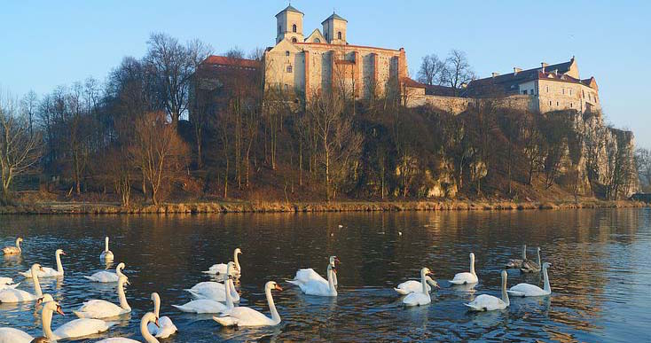swans and castle