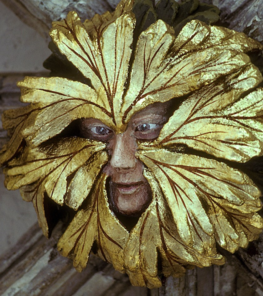 Skin colored face with gold leaves sprouting from sides of nose and between eyes.