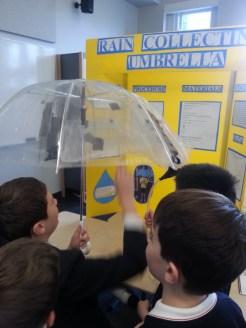 This umbrella captures rainwater