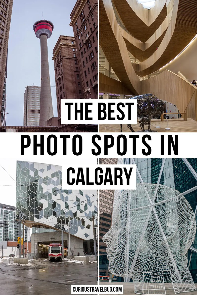 The Best Photography Spots in Calgary: More Than a Stampede