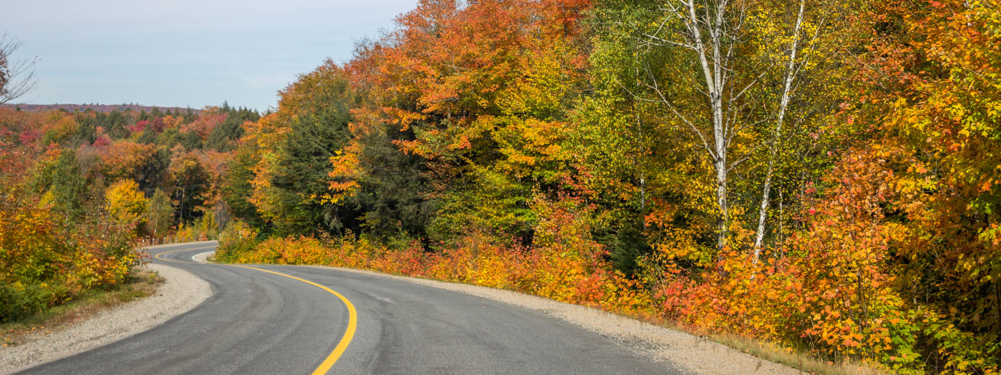 Ontario Road Trips From Toronto - Curious Travel Bug