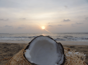 Coconut-snack-&-the-sunset