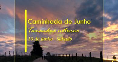 Caminhada de Junho – Tamanduá Noturno