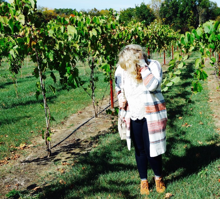 Curls and Contours, Michigan Wine Trail