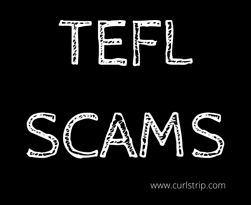 TEFL Scams Graphic-Curls Trip