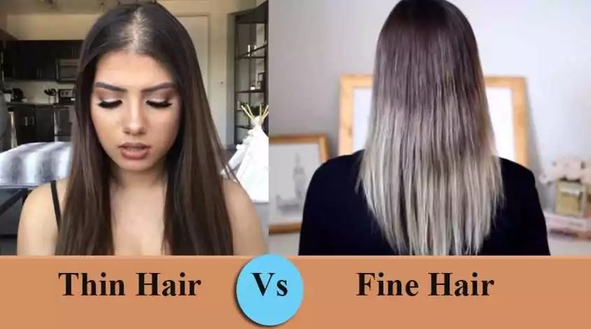 Thin Hair Vs Fine Hair