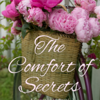 REVIEW:  THE COMFORT OF SECRETS, BY CHRISTINE NOLFI