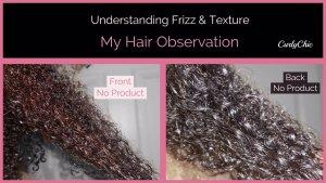 Understanding Frizzy Textured Hair