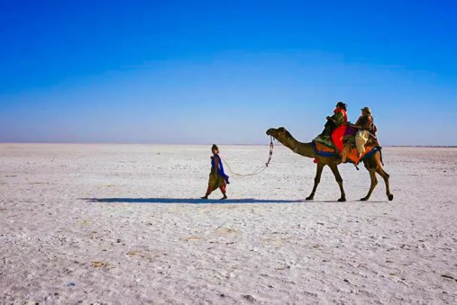 5 Reasons Why You Should Explore Rann of Kutch Over America's Bonneville  Salt Flats