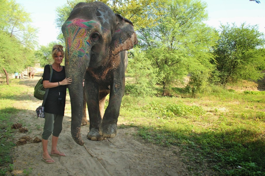 Painting and caressing an elephant in Rajasthan, India.