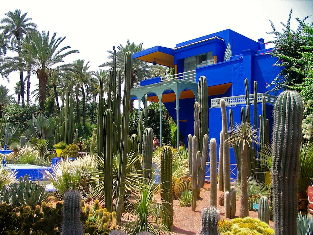 Why you should visit jardin majorelle in marrakech for Jardin yves saint laurent