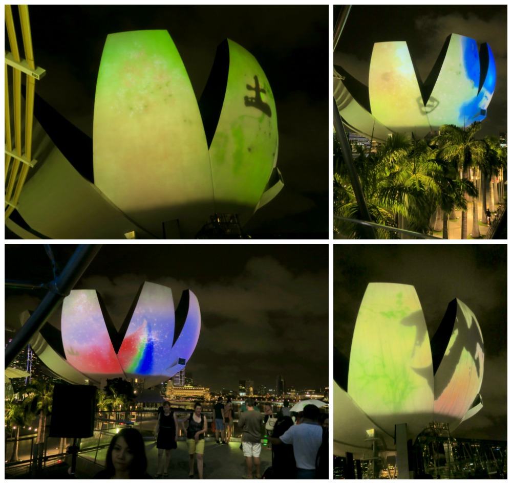 What a Loving & beautiful world by TeamLab |curlytraveller.com