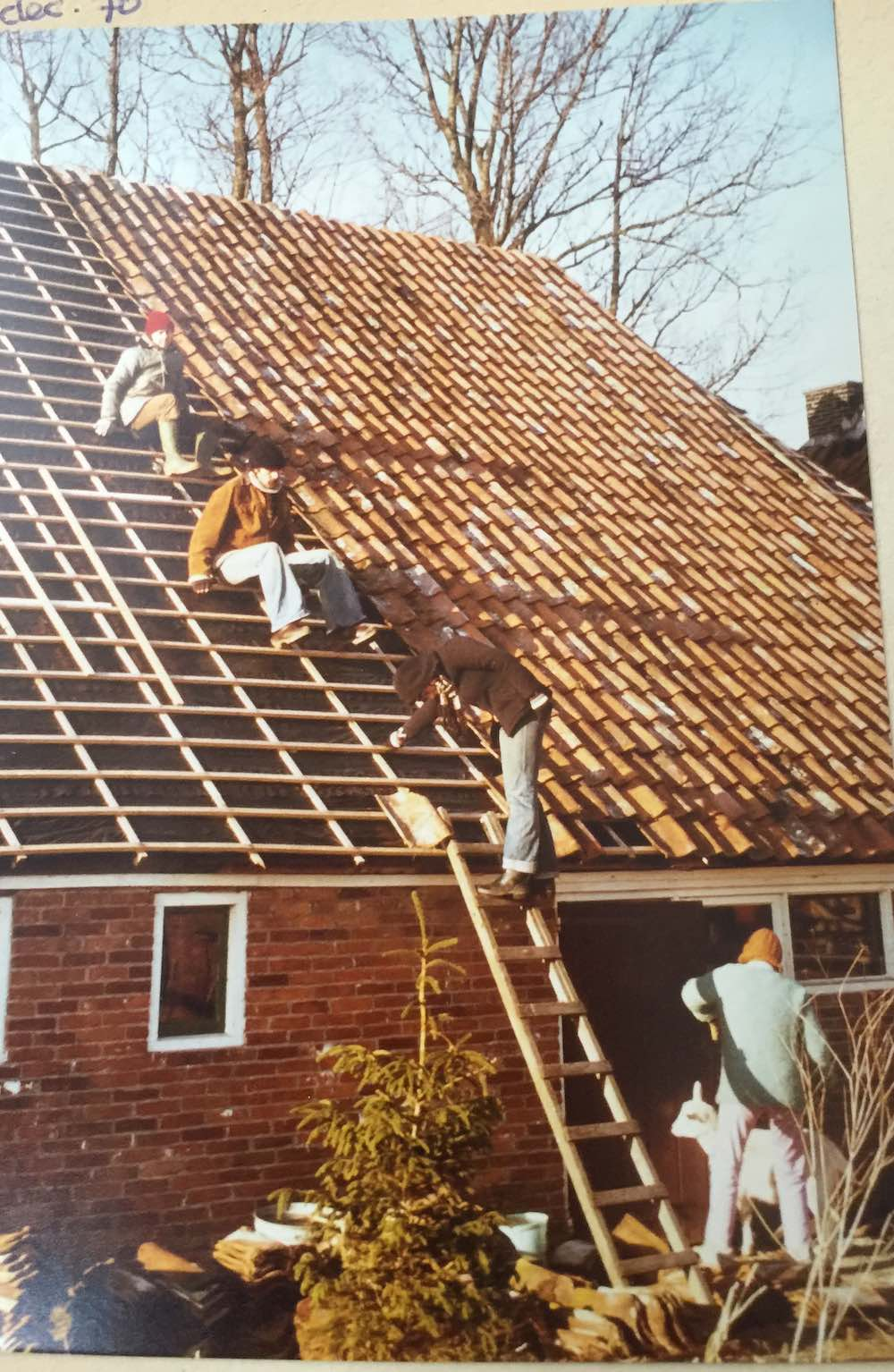 People working on the roof of a barn in Groningen |curlytraveller.com