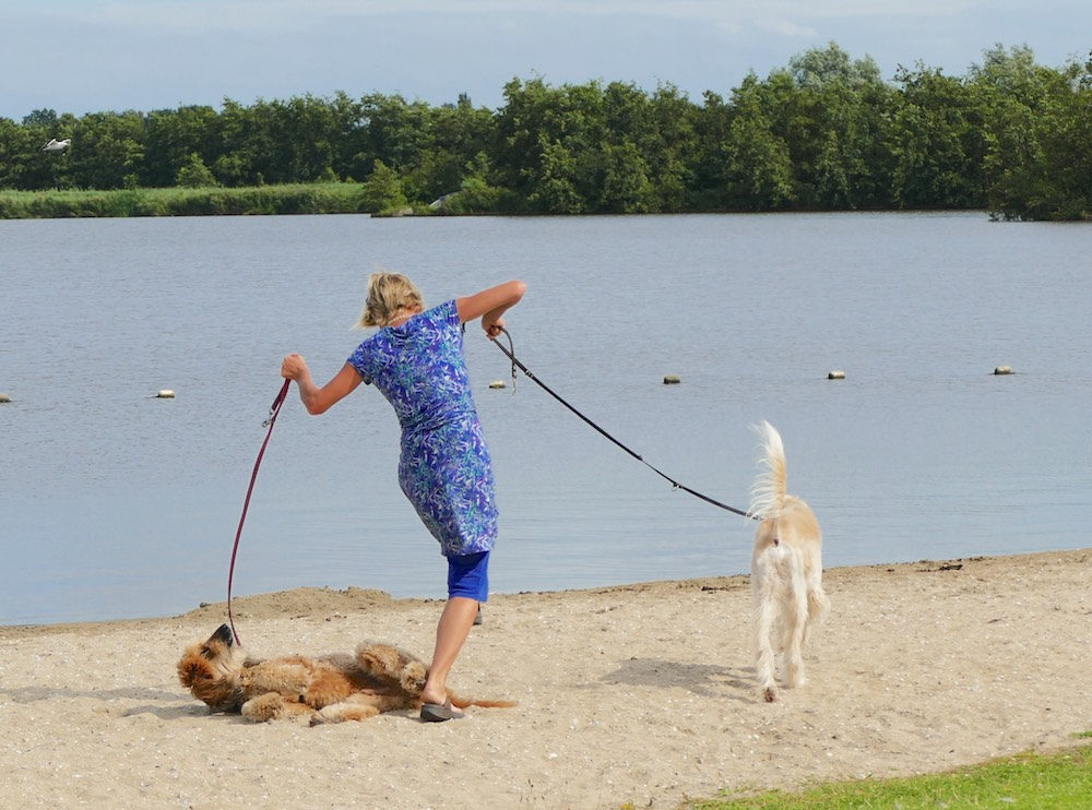 Woman almost falling over one of her dogs |curlytraveller.com