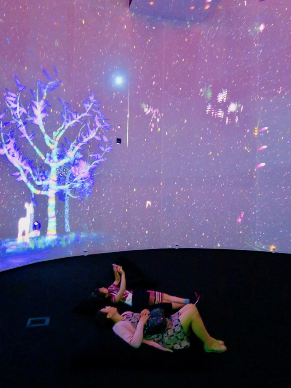 Ladies watching Story of the Forest by Teamlab |curlytraveller.com