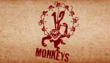 Twelve Monkeys - time travel