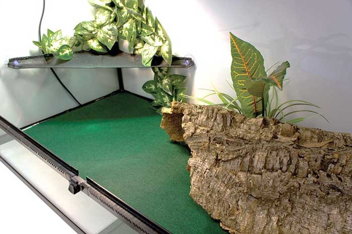 Carpet substrate for reptile