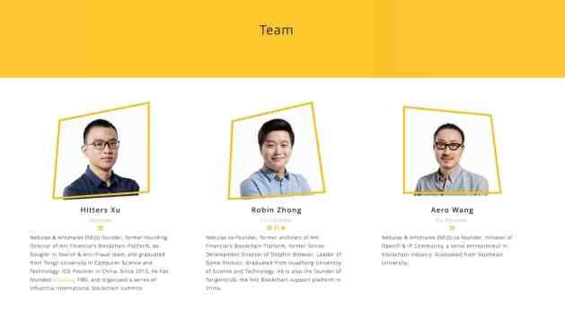 Nebulas team