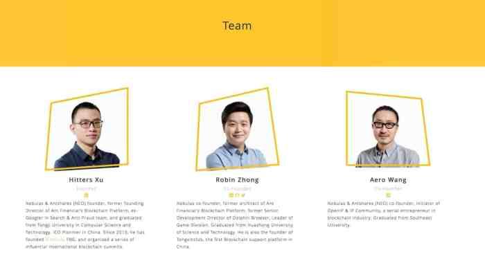 Nebulas team