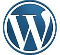 WordPress website software