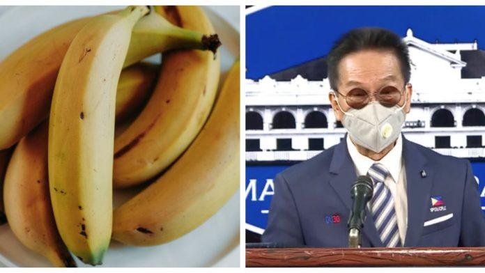 Salvador-Panelo-believes-bananas-can-prevent-COVID-19-960x540