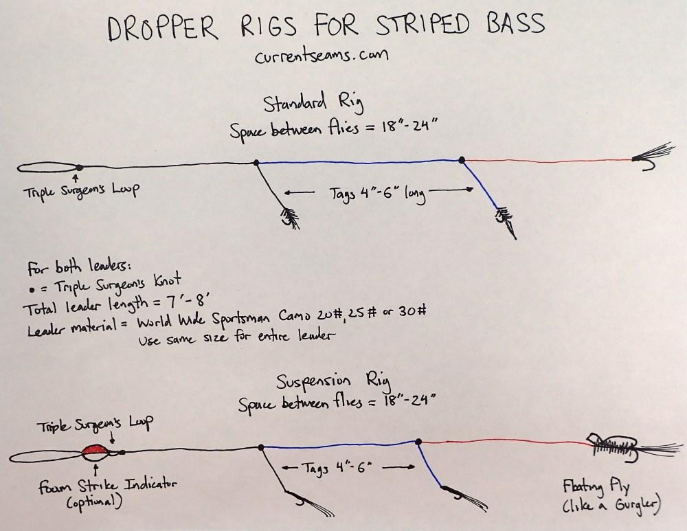 medium resolution of bas fish diagram