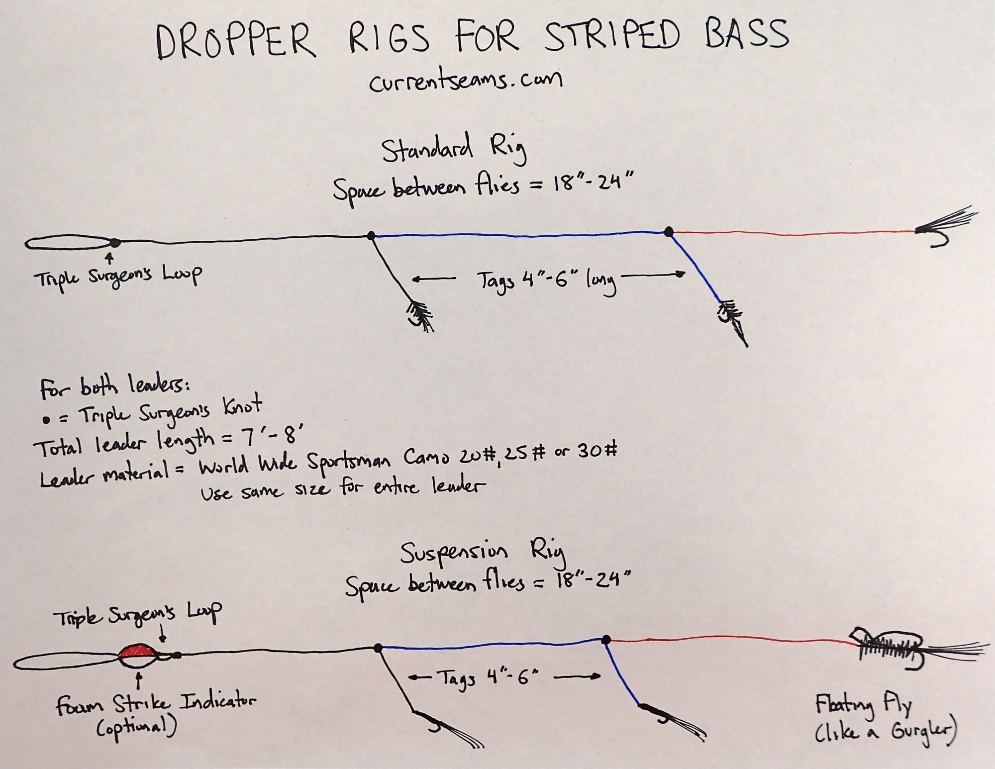 hight resolution of bas fish diagram