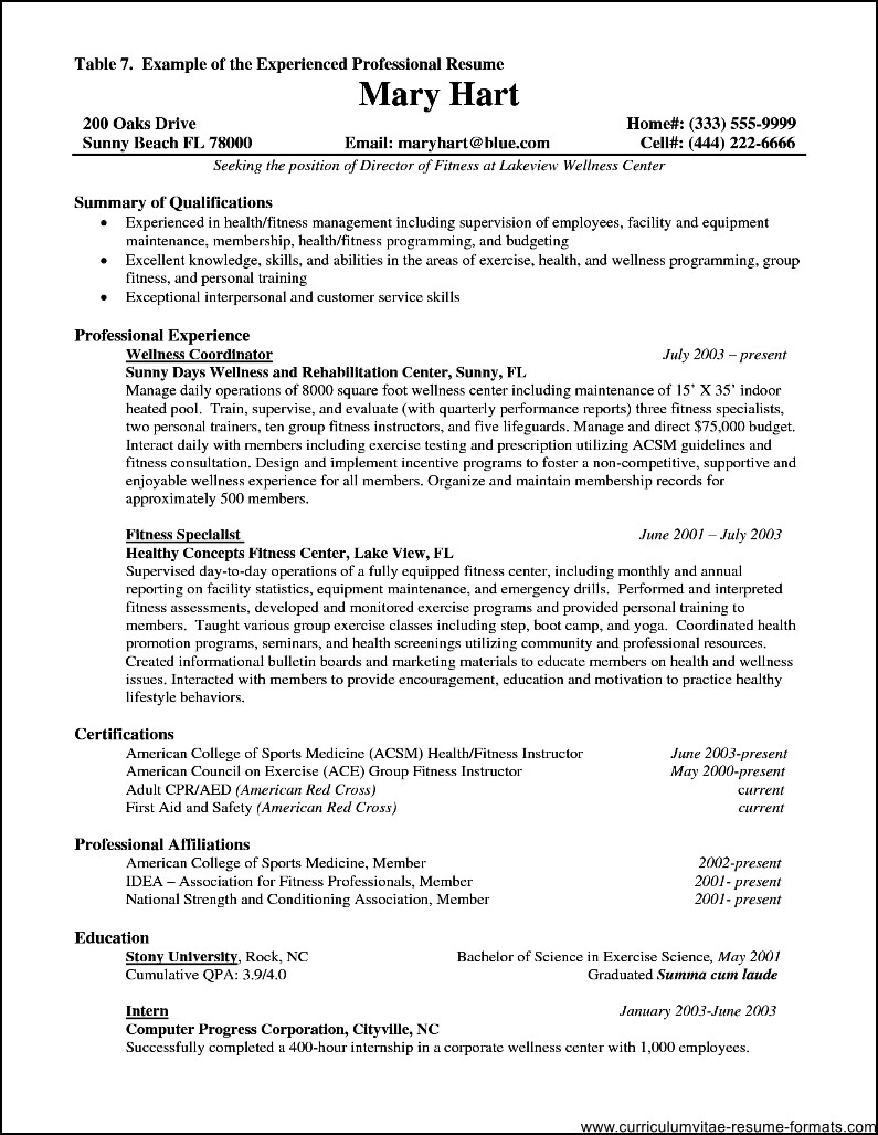 Resume Format For Experienced It Professionals Pdf Free