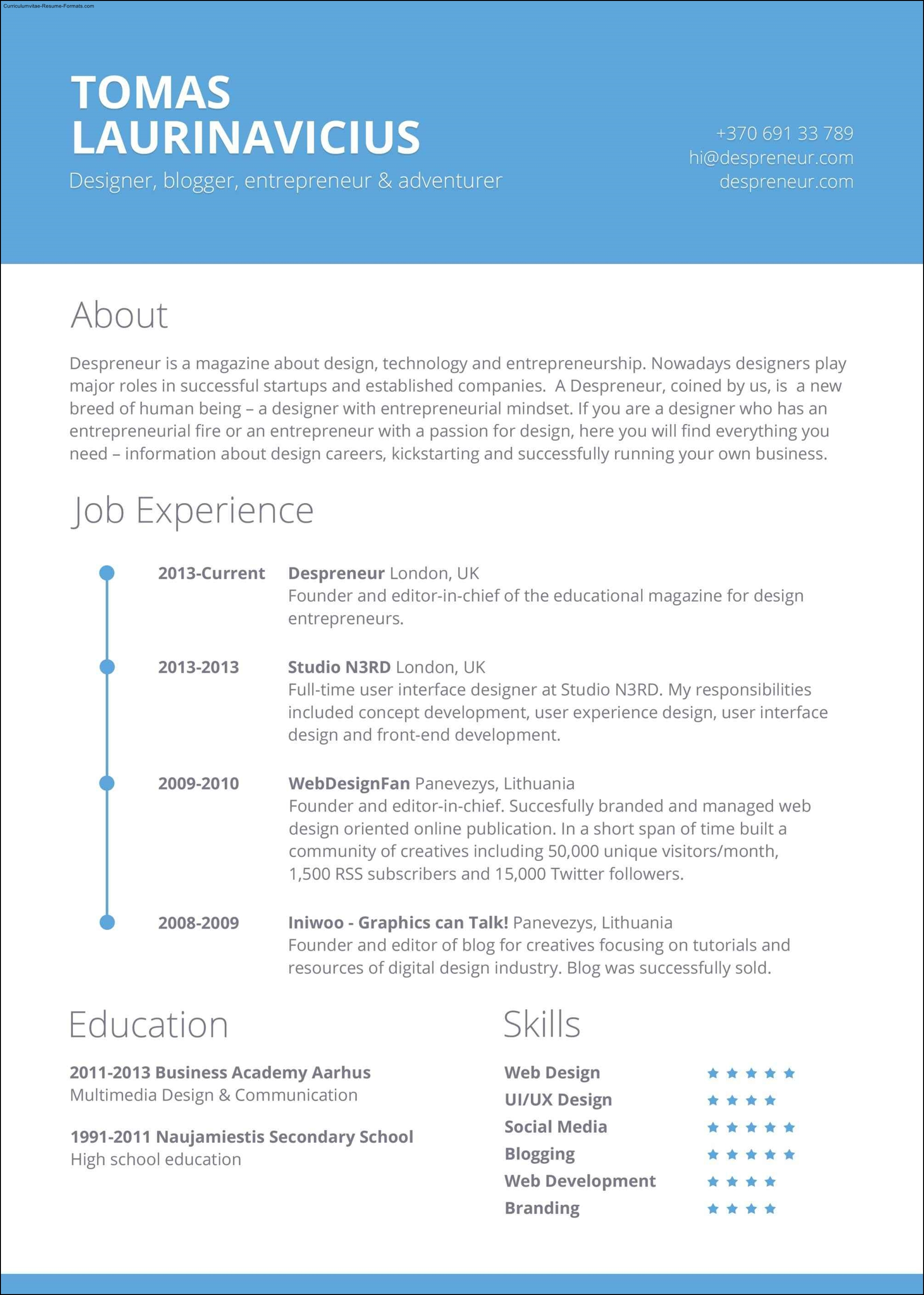 How To Create A Resume Template In Openoffice Free Professional Resume Template Free Samples