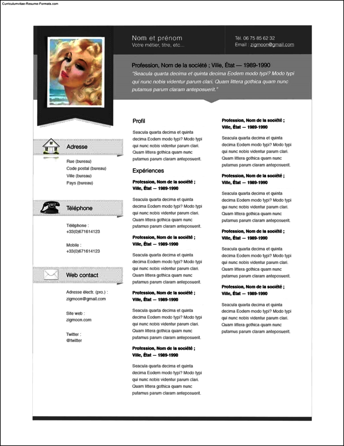 Resume Pages Resume Templates Pages Free Samples Examples And Format