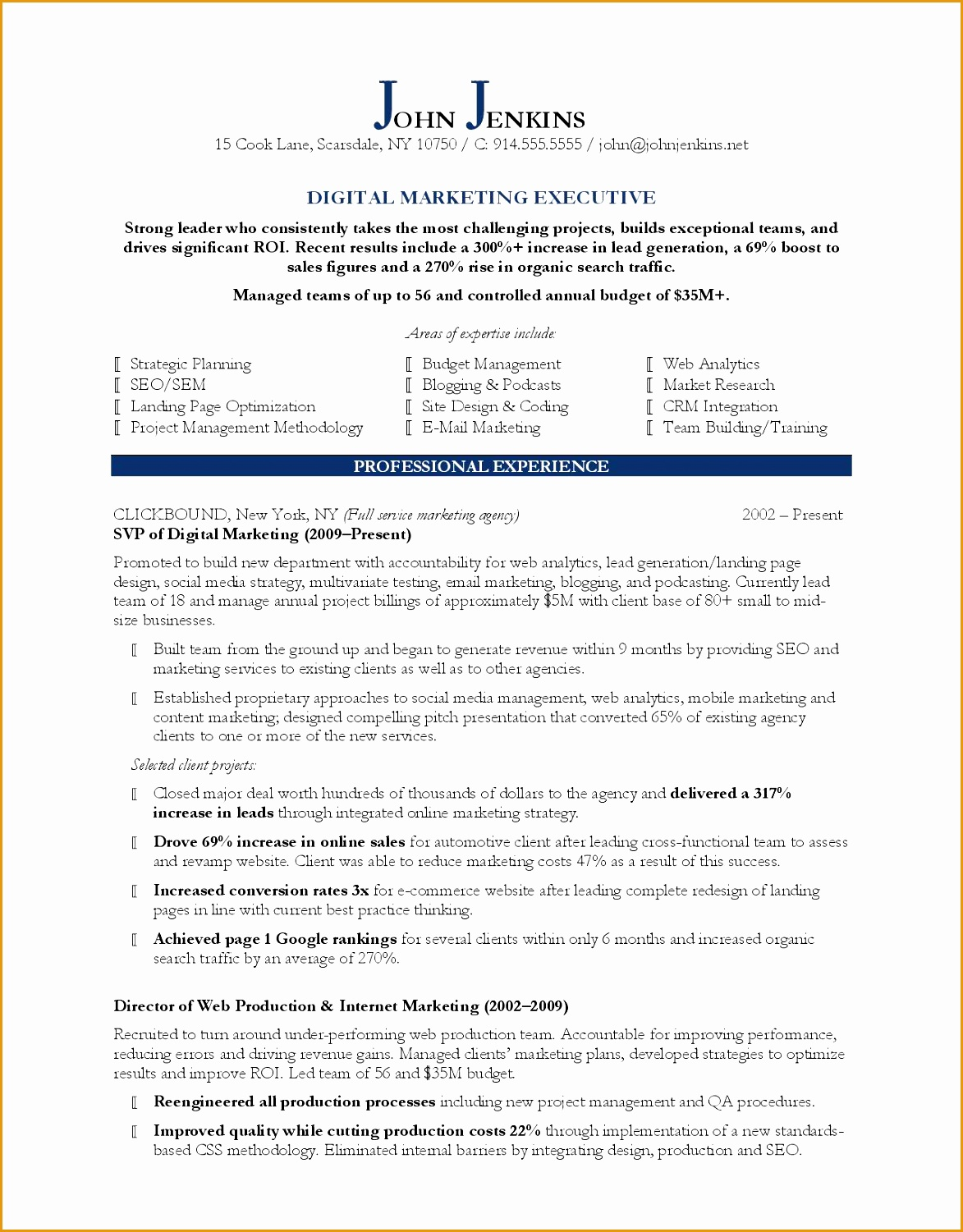 Bank Sales Executive Resume 6 Sales Marketing Resume Sample Free Samples Examples