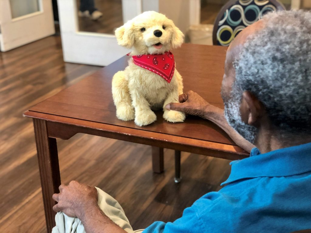 Residents enjoy interacting with robotic companion pets and therapy animals at Currituck House