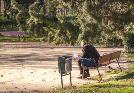 En el Retiro se hacen extraños amigos - Paseando por el Parque del Retiro