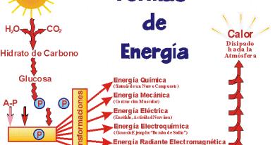 OTRAS FORMAS DE ENERGÍA