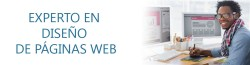 Master experto web