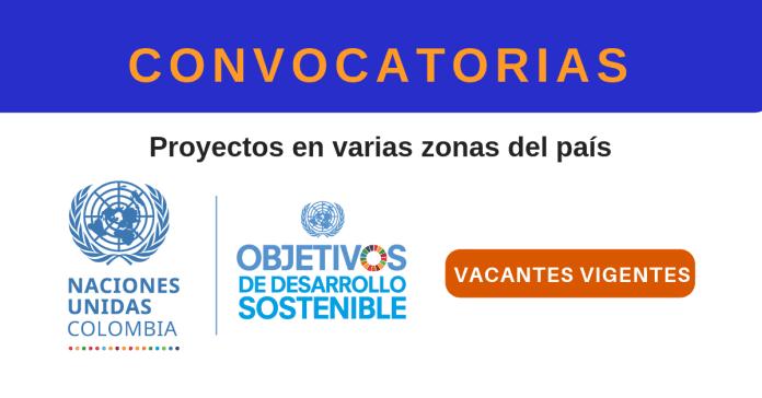 ONU Colombia busco empleo