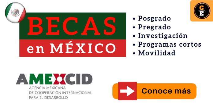 Becas para maestrías en México AMEXID