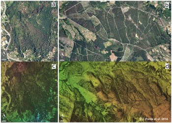 Carballiño: Orthophoto (a) and Digital Surface Model (DSM) (c); Os Milagros do Monte Medo: Orthophoto (b) and DSM (d)