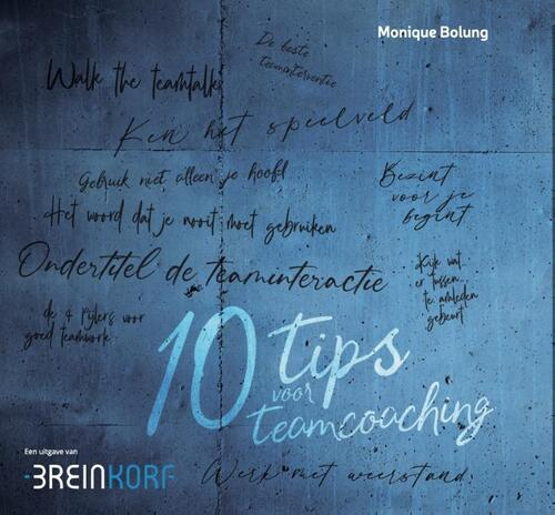 10 Tips voor Teamcoaching - Monique Bolung - Hardcover (9789090339306)