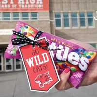 Free High School Musical Candy Tags