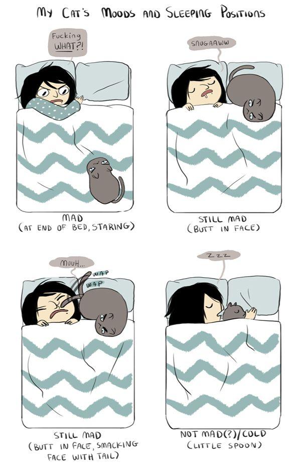 i love sleep tag 1 - Personal | I ♥ sleep tag