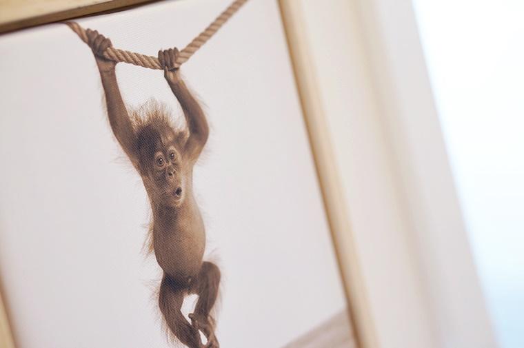 arty animals 5 - Interieur tip | Arty Animals voor aan je muur