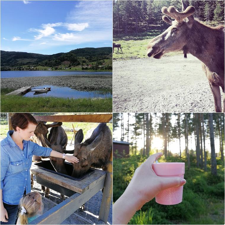 rondreis door Zuid Noorwegen