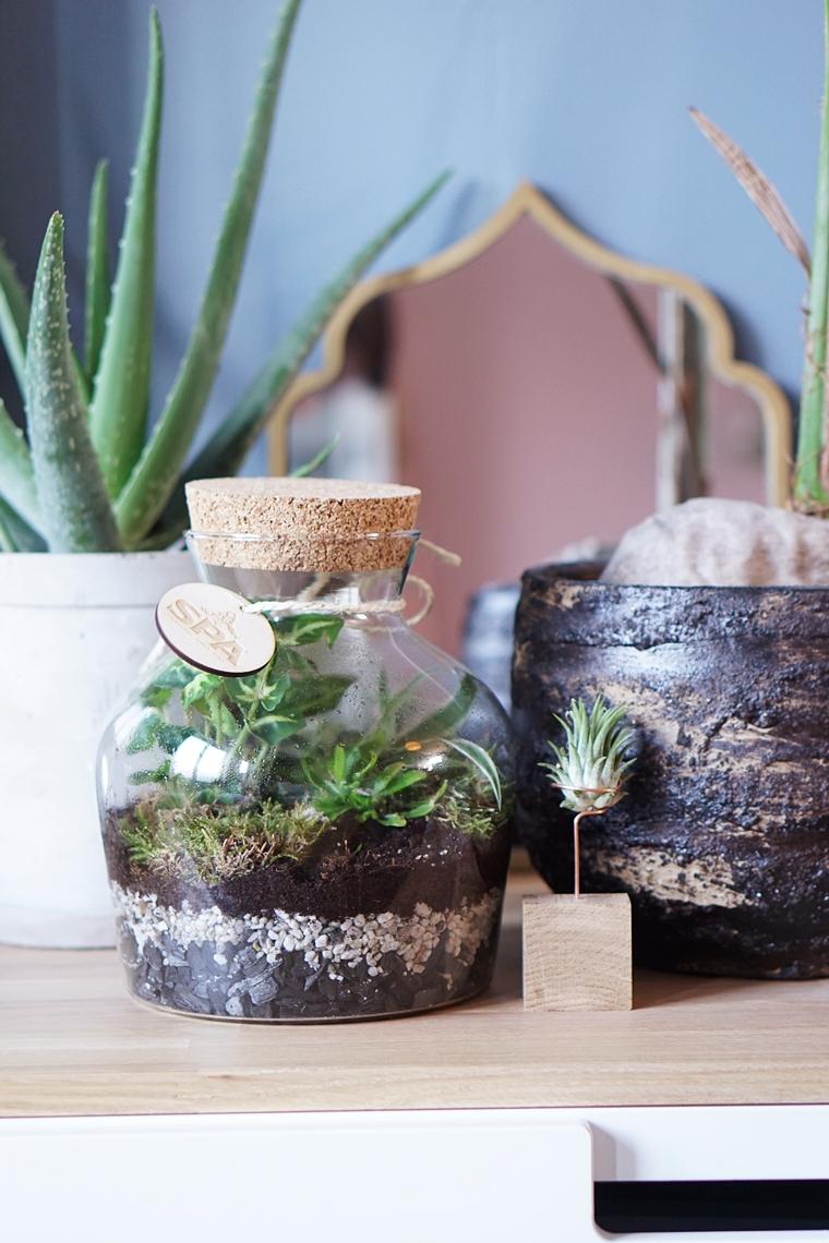 planten terrarium ecosysteem maken diy 1 - DIY | Planten terrarium/ecosysteem maken