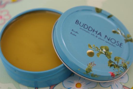 buddhanose5 - Buddha Nose