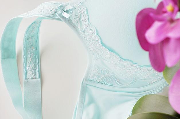 Rosa Faia lingerie