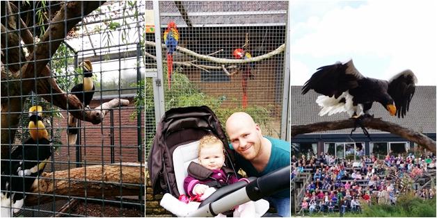 weekendje weg nh leeuwenhorst noordwijk augustus 2014 15 - Weekendje weg | Reünie, Haarlem, Noordwijk & Avifauna